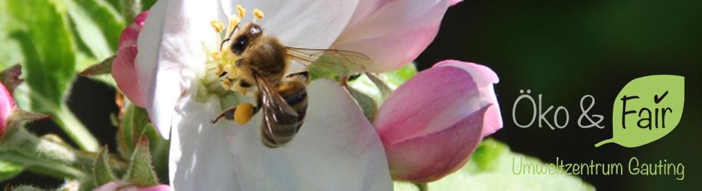 Banner Bienen-2