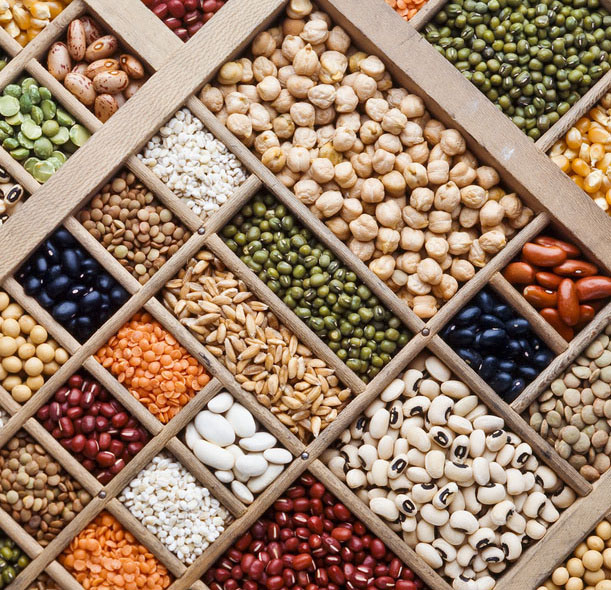 composition of grain, seeds and  legumes
