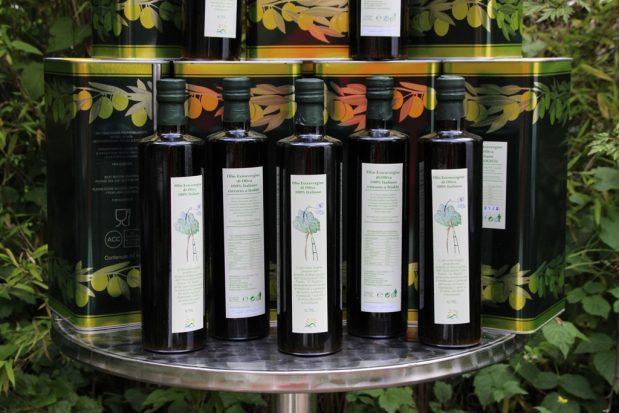 Wir haben Bio-Olivenöl aus Riace geholt