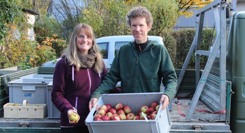 Apfelschätze in Gauting